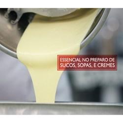Liquidificador Industrial 4 Litros Skymsen  0,5CV Monobloco em Inox Super - LS-04MB